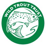 wtt-logo-border